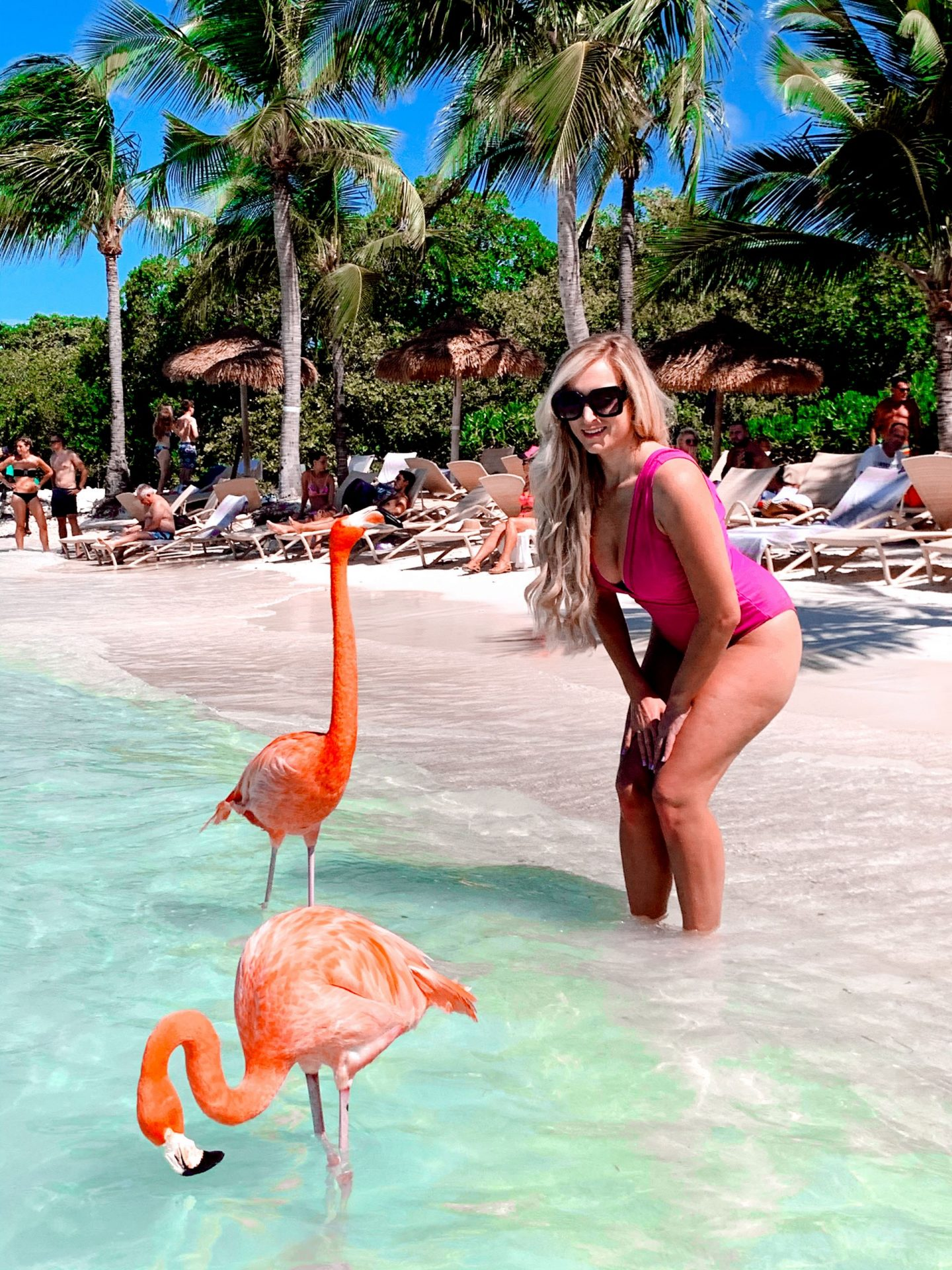 one woman standing with flamingos on a tropical beach